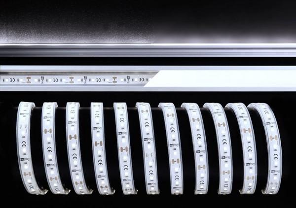 Deko-Light Flexibler LED Stripe, 2835-60-12V-6000K-5m-Silikon, Kupfer, Weiß, Kaltweiß, 120°, 40W