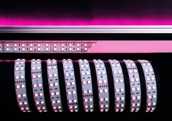 Deko-Light Flexibler LED Stripe, 5050-2x60-24V-RGB+6000K-3m, Kupfer, Weiß, RGB + Kaltweiß, 120°, 75W