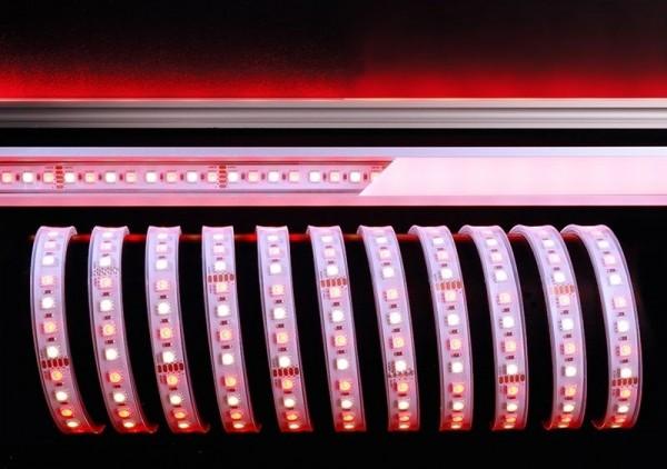 Deko-Light Flexibler LED Stripe, 5050-96-24V-RGB+2800K-5m-Silikon, Kupfer, Weiß, RGB + Warmweiß, 65W