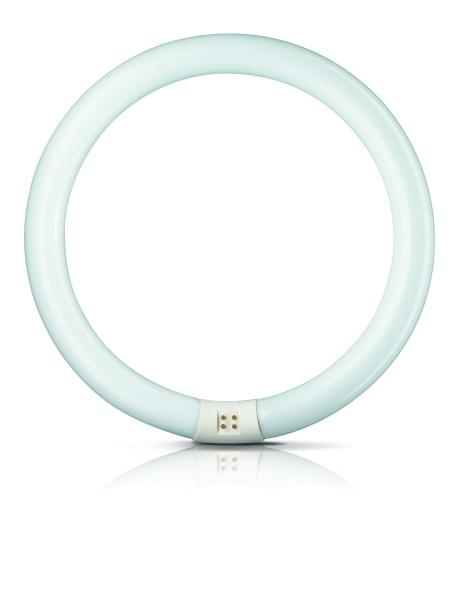 Leuchtstofflampe Ringform 22 W T9 865 G10q Philips Master