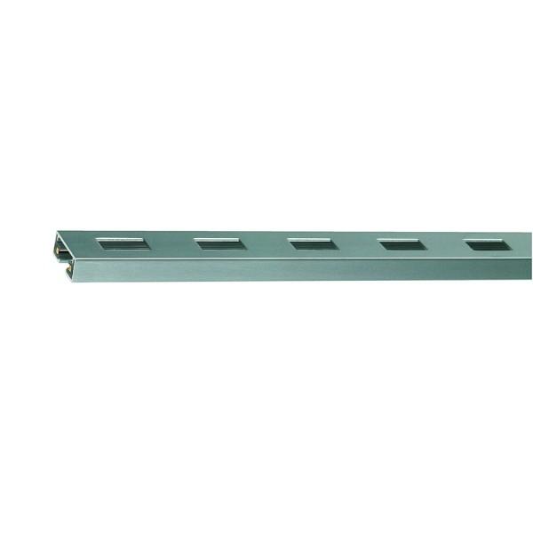 C-TRACK Schiene, silbergrau, 2m, inkl. 2 Endkappen, max. 20A
